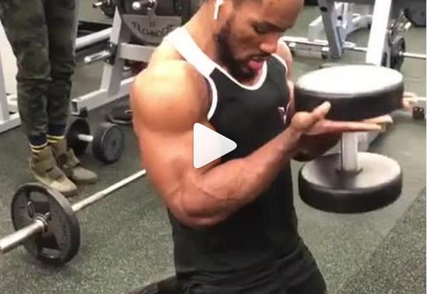 Biceps Workout 15