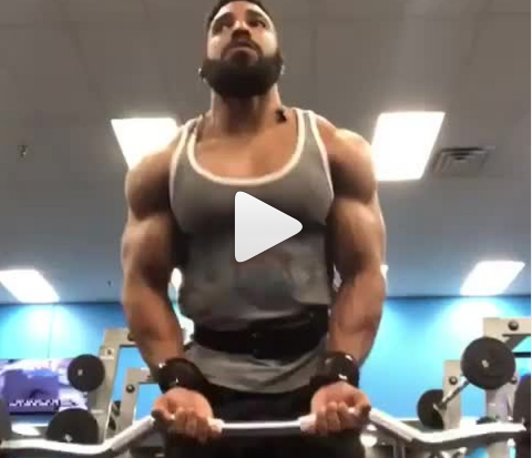 Biceps Workout 23