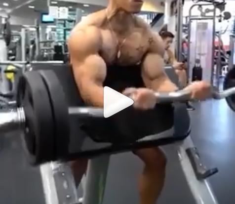 Biceps Workout 32